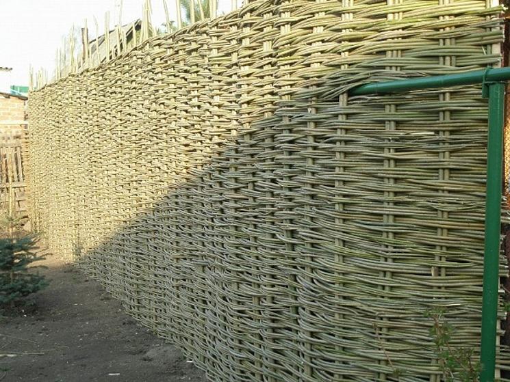 плетень